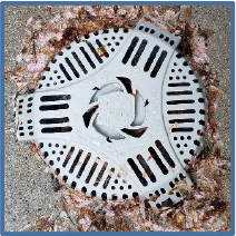 Drain Defender outdoor drain filter keeps out flower blossoms and petals from outdoor drains