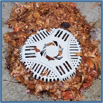Drain Defender protects against clogged outdoor drain pipes